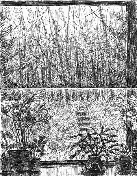 Drawing of Picture Window