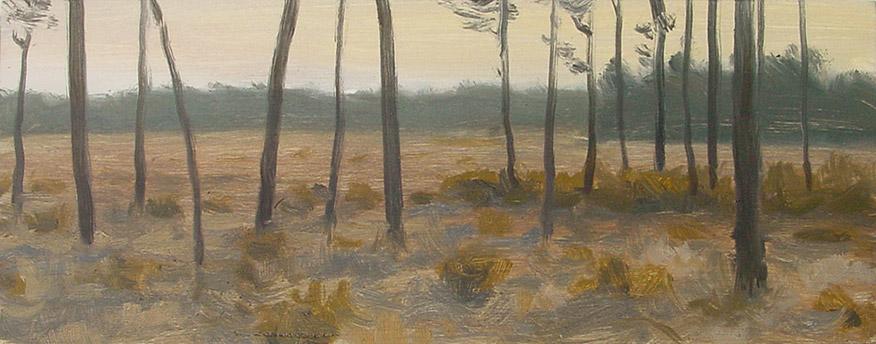 Painting of Savanna in Evening Light