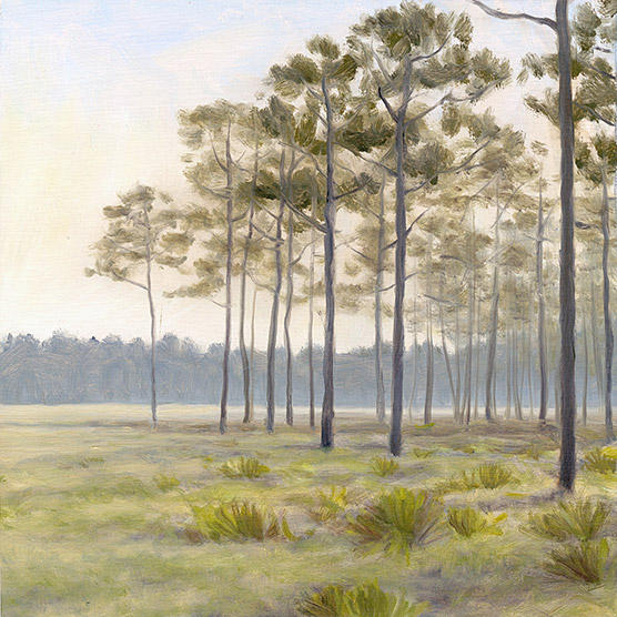 Painting of Savanna in Morning Light