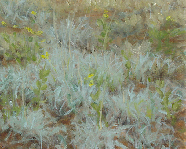 Painting of Chalky Bluestem