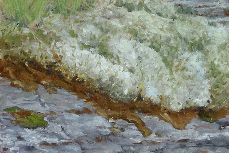 Painting of Moss and Lichen Study
