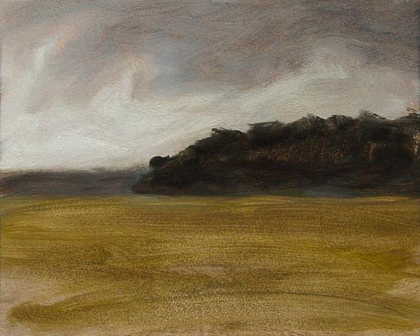 Painting of Edisto Storm
