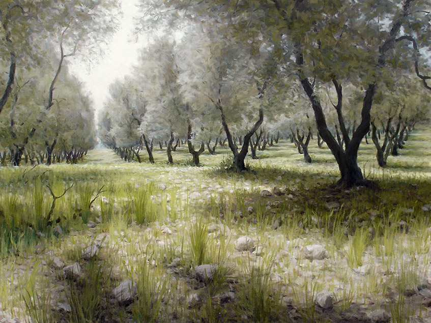 Painting of Olive Orchard