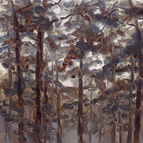 Painting of Tree Study at Dusk