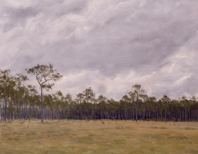 Painting of Wet Savanna
