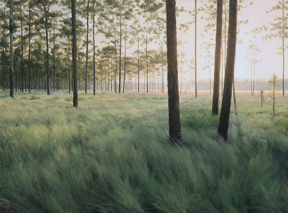 Painting of Wiregrass Savanna