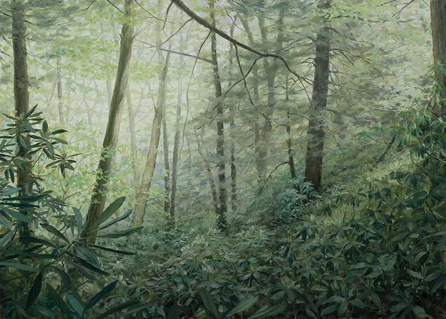 Painting of Dark Prong Forest