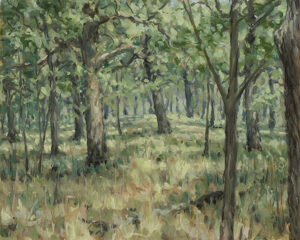 Painting of Old Growth Oak Savanna
