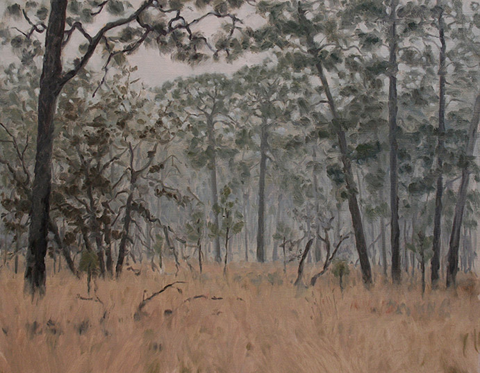 Painting of Moody Forest