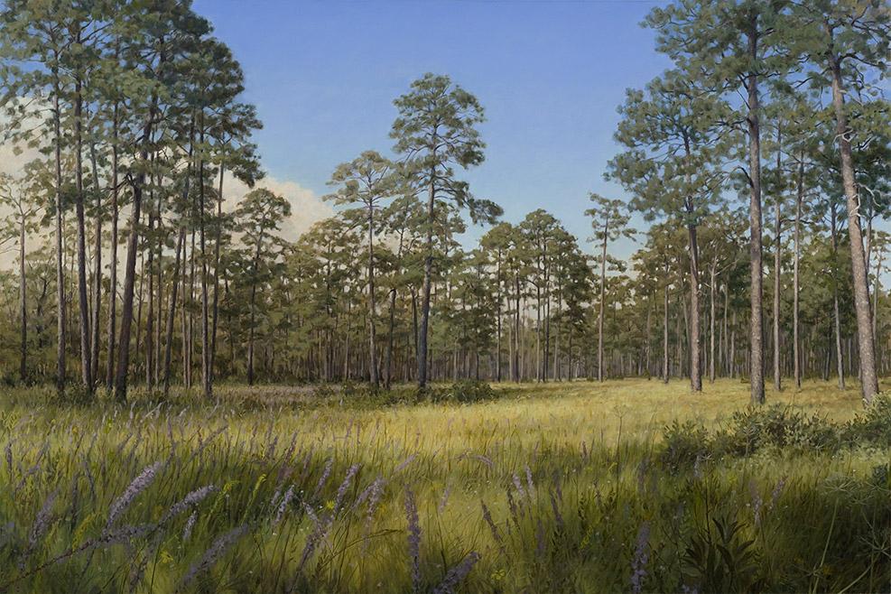 Painting of Longleaf Glade