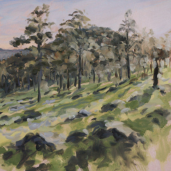 Painting of Burkes Mountain