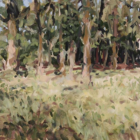 Painting of Oak Grove