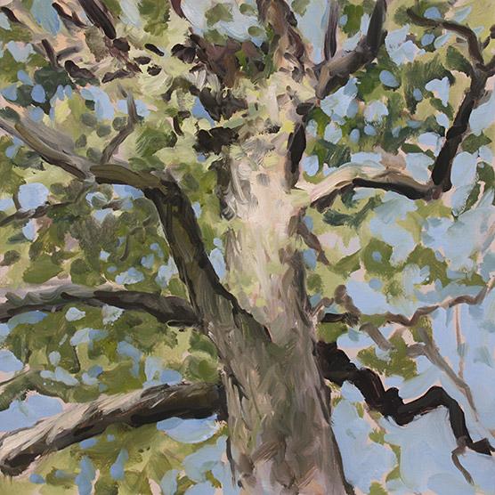 Painting of Post Oak