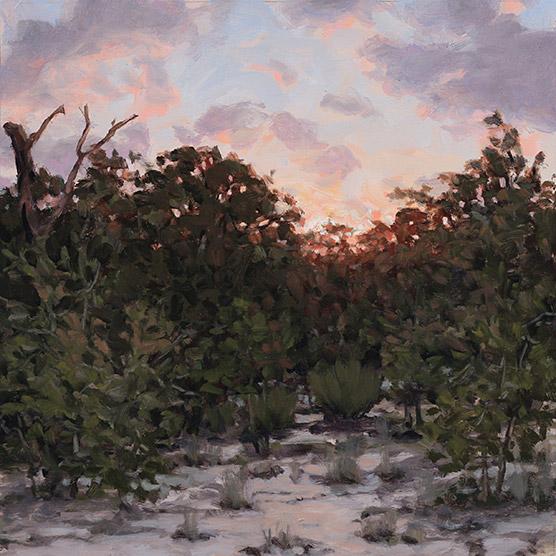 Painting of Ohoopee Dunes