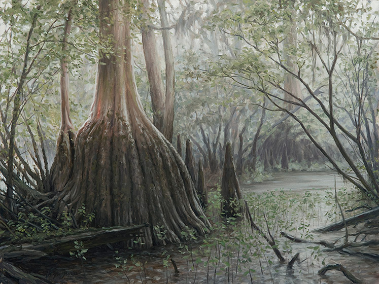 Painting of Old Growth Cypress in the Rain