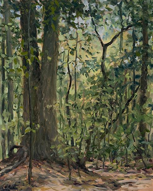 Painting of Giant Poplar