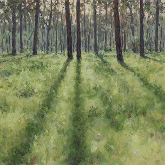 Painting of 2 Month Wiregrass