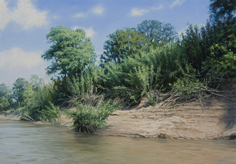 Painting of Canebrake on the Mississippi