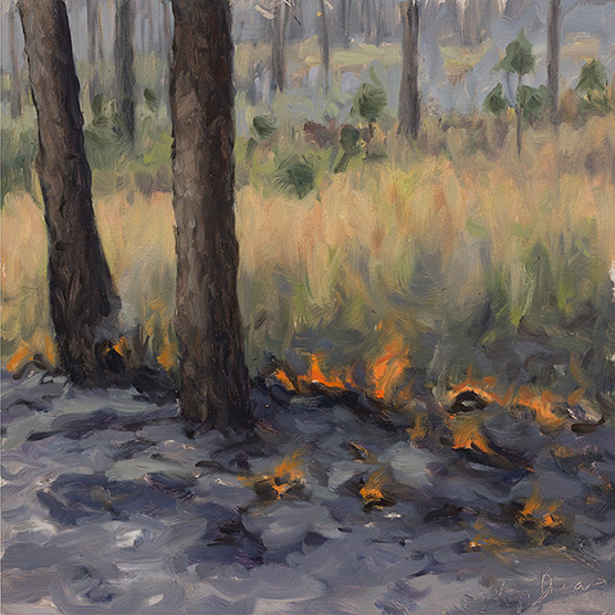 Painting of Wade Tract Burn #7