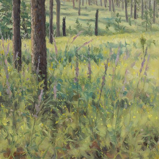 Painting of Liatris and Partridge Pea