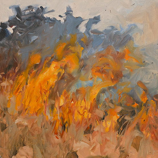 Painting of Fire in Broomsedge