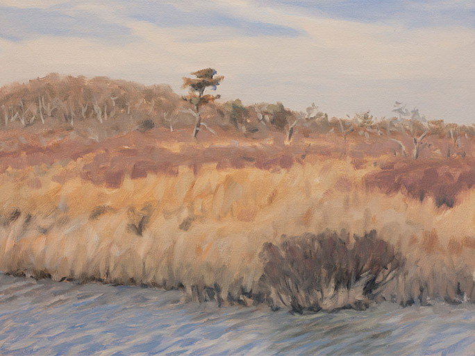 Painting of Long Cove