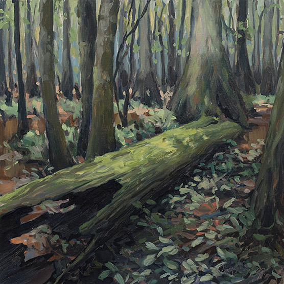 Painting of Old Cypress Log