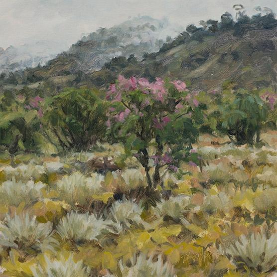 Painting of Espeletia Argentea