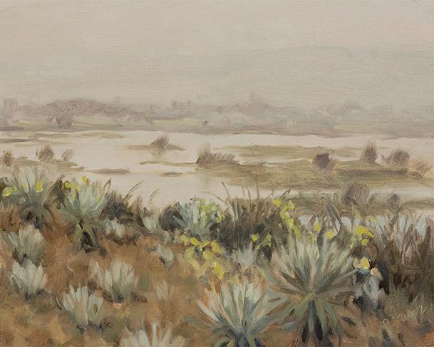 Painting of Espeletia Grandiflora