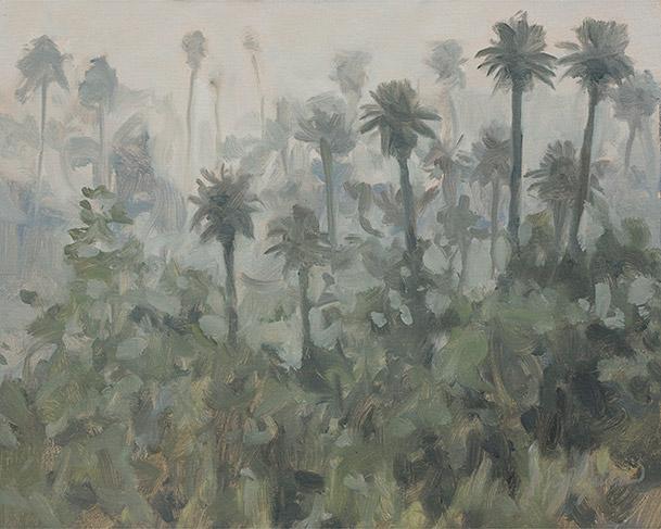 Painting of Espeletia Uribei