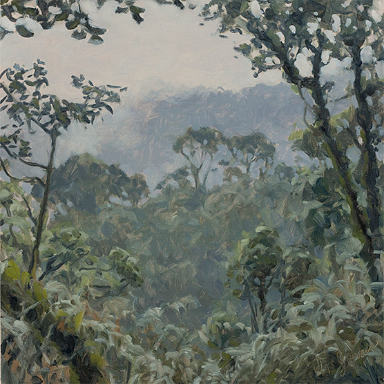 Painting of Cloud Forest Opening