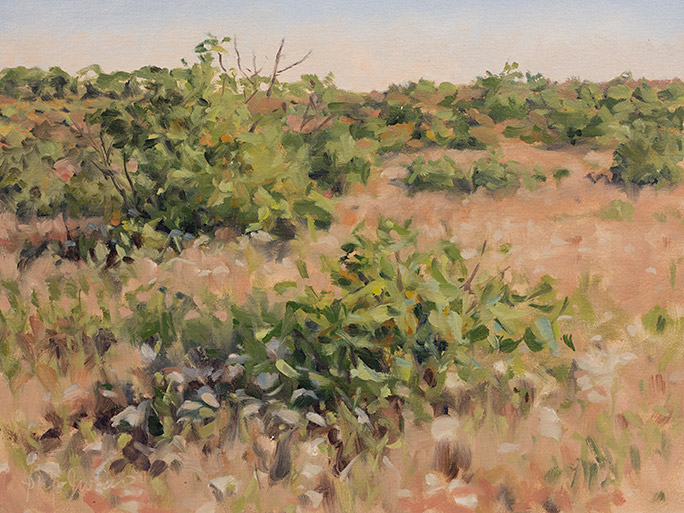 Painting of Scrub Oak and Bluestem