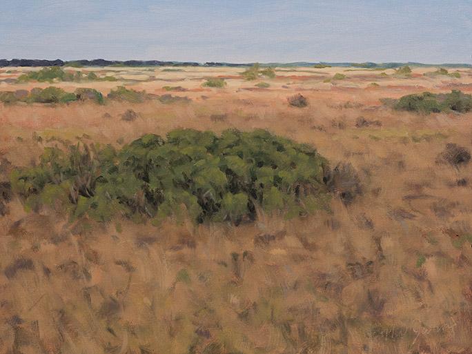 Painting of Katama Plains (Airfield)