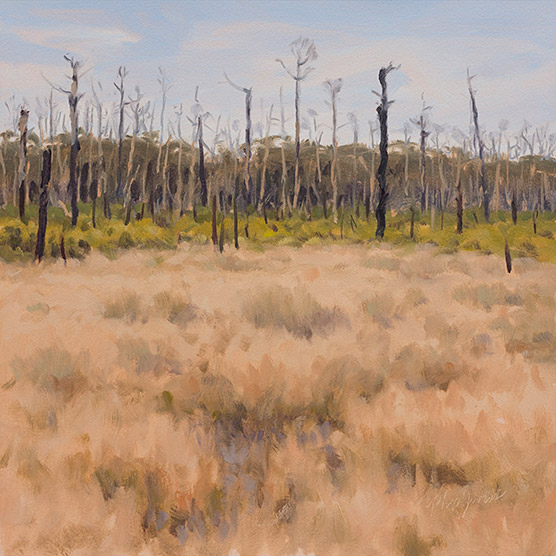 Painting of Wetlands and Wildfire Snags