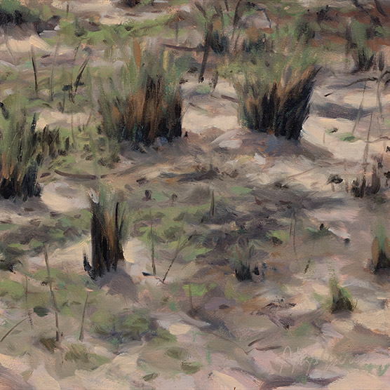 Painting of Burnt Muhly Grass