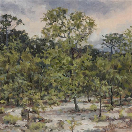 Painting of Turkey Oak