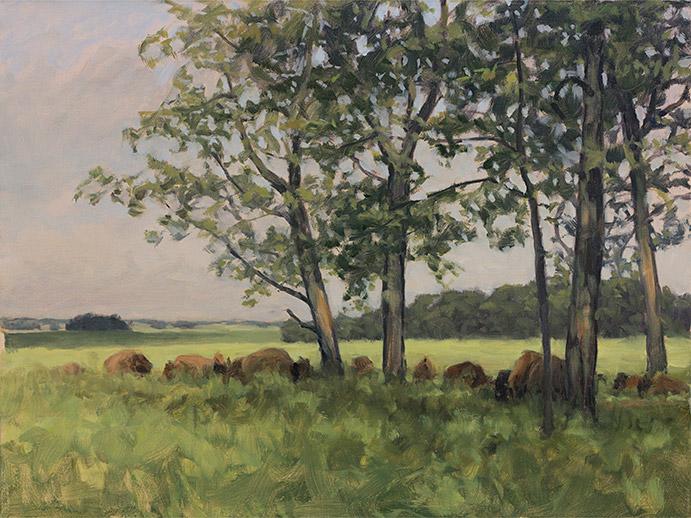 Painting of Bison Herd