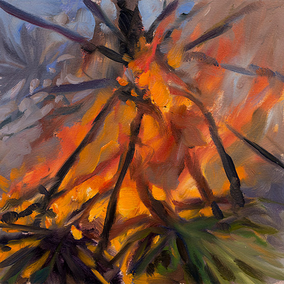 Painting of Palmetto Flame Study