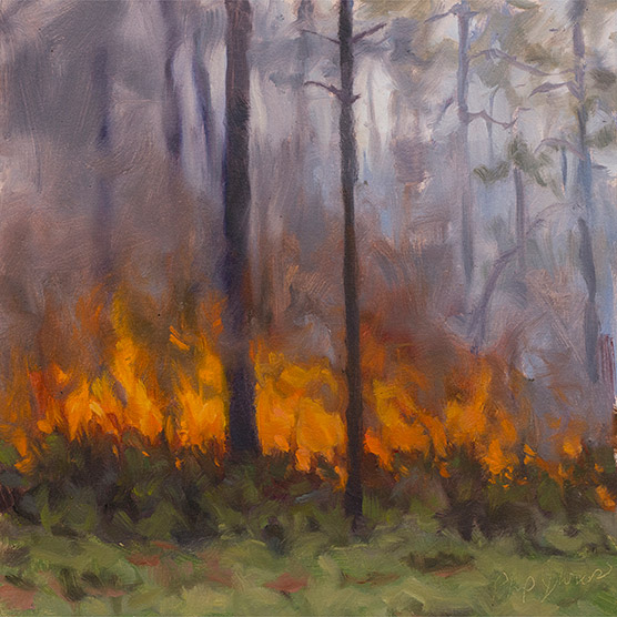 Painting of Saw Palmetto Blaze