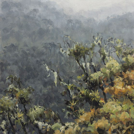 Painting of Cloud Forest View