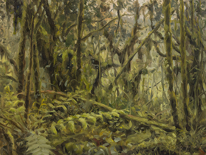 Painting of Cloud Forest Interior