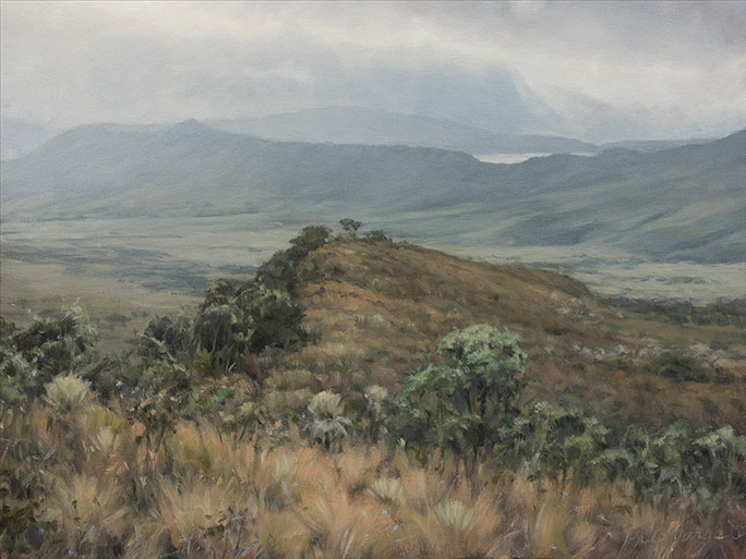 Painting of Frailejon Valley 1
