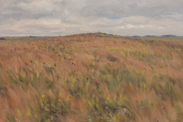 Painting of Foley Sand Prairie