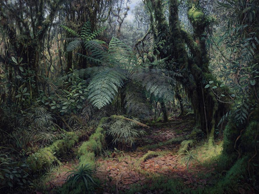 Painting of Sunlit Cloud Forest