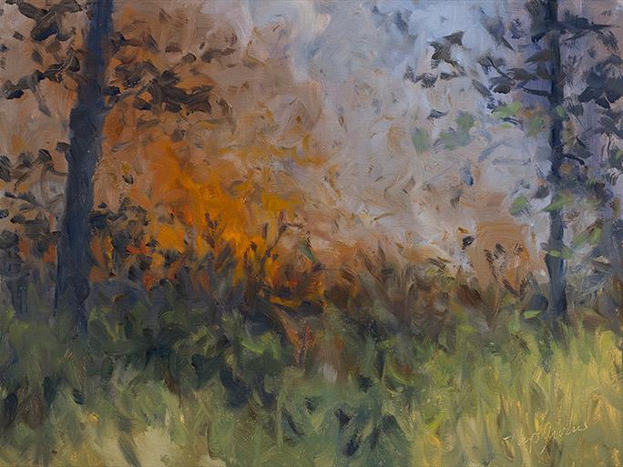 Painting of Canebrake