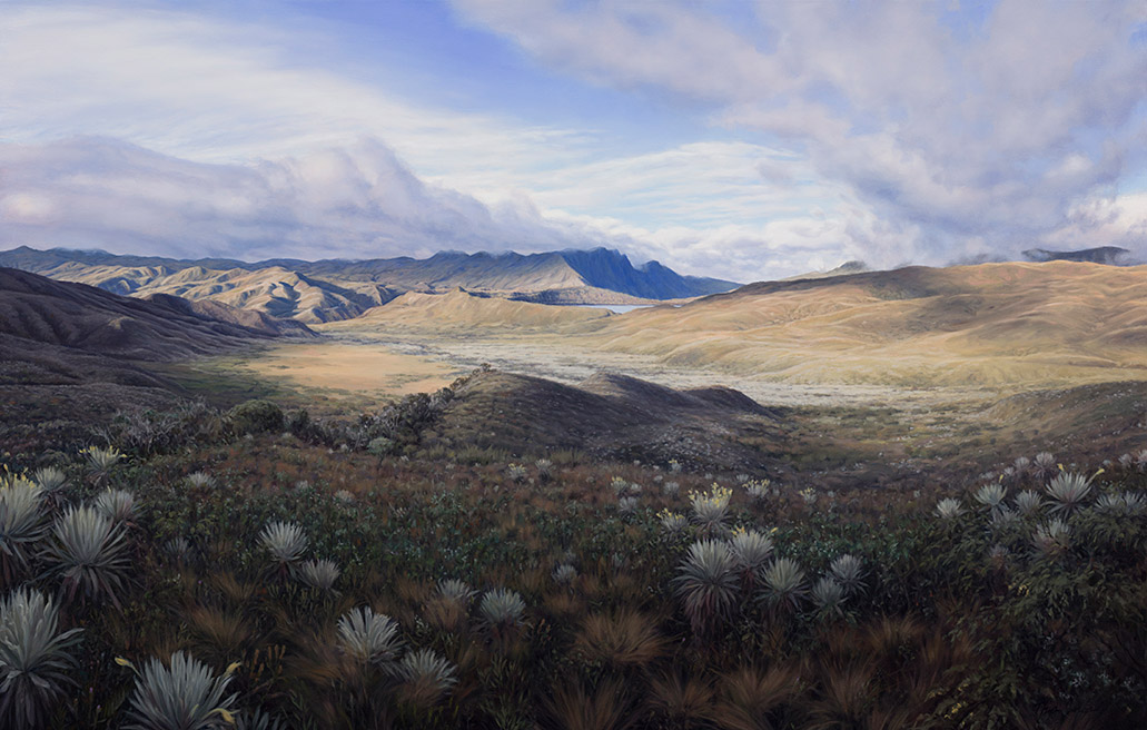 Painting of View from La Paila (Frailejon Valley and Laguna Chingaza)