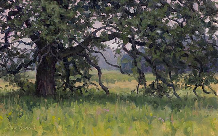 Painting of Bur Oak