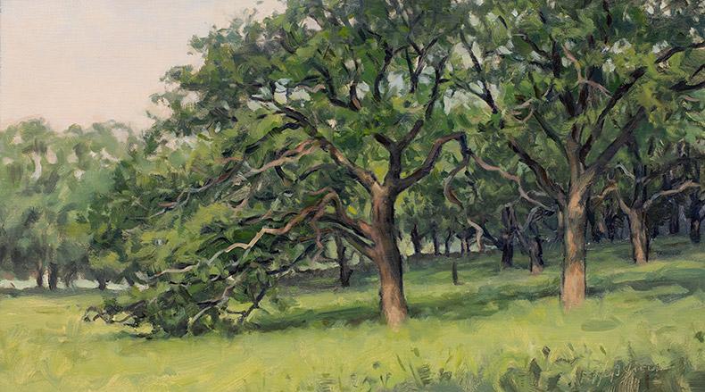 Painting of Oak Savanna
