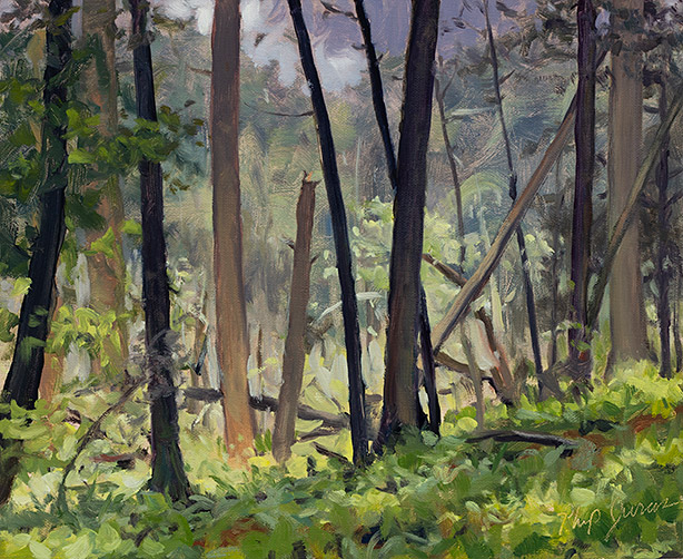 Painting of Hartwood's Forest