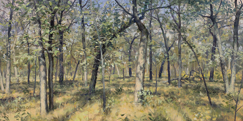 Painting of Post Oak Savanna